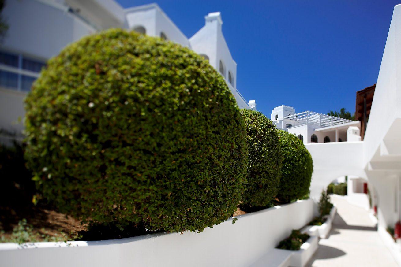 Fotograf profesionist Dan Malureanu www.sesivede.ro | +40 721244244