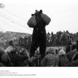 ceata-de-oameni-jocul-ursilor-foto-dan-malureanu-06