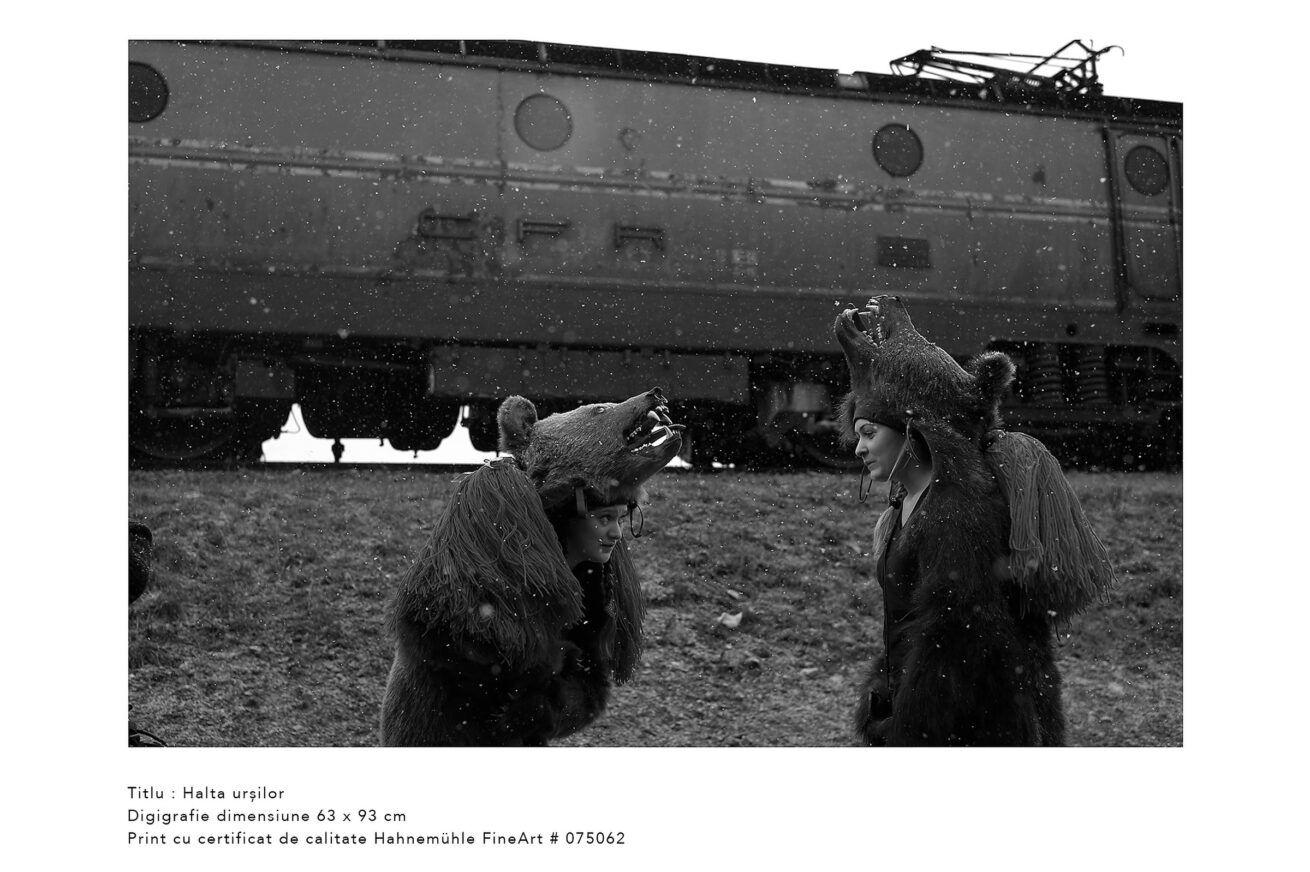 halta-ursilor-jocul-ursilor-foto-dan-malureanu-08
