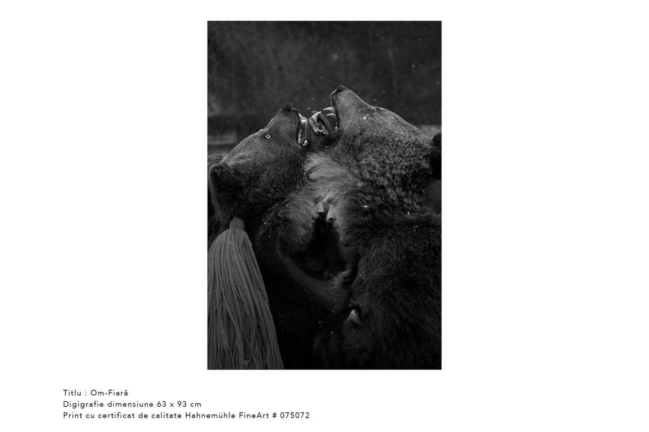 om-fiara-jocul-ursilor-foto-dan-malureanu-01